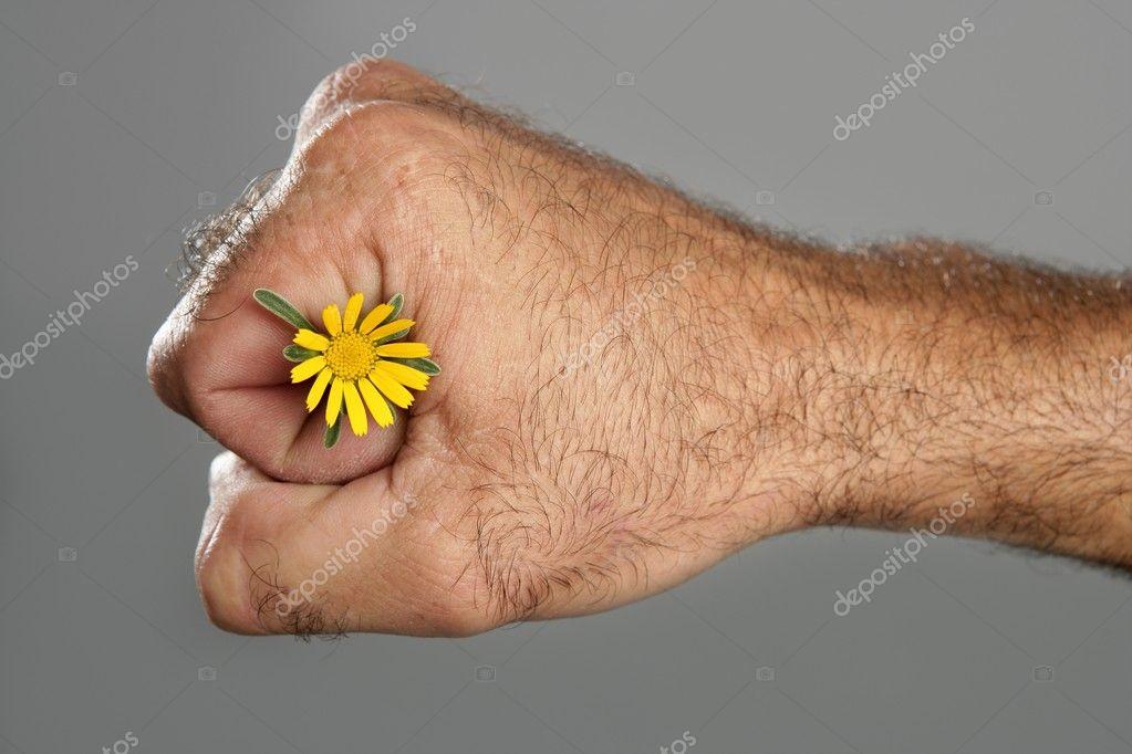 фото настоящей чёрной мохнатой руки