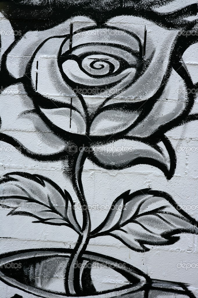 Black and white rose street graffiti paint detail wall — Photo #5508431