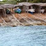 Escalo Formentera boat stranded wooden rails — Stock Photo #5510113
