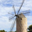 Salt windmill traditional Formentera Ibiza Balearic - Foto Stock