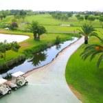 ゴルフコース湖ヤシの木からの眺め — ストック写真