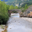 Arch stone bridge in romanesque Hecho village - Stock Photo