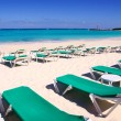 Caribbean beach turquoise sea green hammocks — Stockfoto