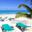 Stock Photo: Caribbebeach turquoise segreen hammocks