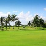 ゴルフコース熱帯ヤシの木のメキシコ — ストック写真