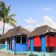 Hut palapa colorful tropical cabin palm trees — Stock Photo #5511244