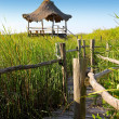 Hut palapa in mangrove reed wetlands — Stock Photo