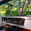 Car retro interior in the jungle in Mayan riviera — Stock Photo