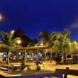 Stock Photo: Puerto Morelos night palm trees Mayriviera
