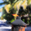 Fire torch flame in tropical palm tree jungle - Foto Stock