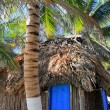 Stock Photo: Coconut palm trees palaphut beach