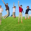 Jumping young happy group in meadow — Stockfoto #5511680