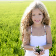 Sprout plant growing from little girl hands outdoo — Stock Photo