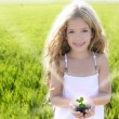 Sprout plant growing from little girl hands outdoo - Stock Photo