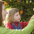 Mother showing daughter orange tree harvest — Stock Photo