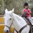Rider little girl jockey hat white horse in park — Stock Photo