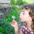Blowing dandelion girl in rural green outdoor - Stok fotoraf