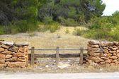 кирпичный каменная стена деревянный забор сосновый лес — Стоковое фото