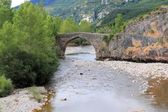 Arch stone bridge in romanesque Hecho village — Stock Photo