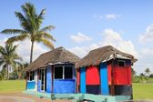 Hut palapa colorful tropical cabin palm trees — Stock Photo