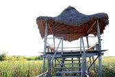 Hut palapa in mangrove reed wetlands — Stock Photo