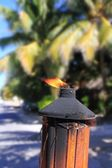Fire torch flame in tropical palm tree jungle — Stock Photo