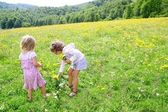 Sister girls in meadow playing with spring flowers — Stock Photo