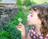 Blowing dandelion girl in rural green outdoor — Stock Photo
