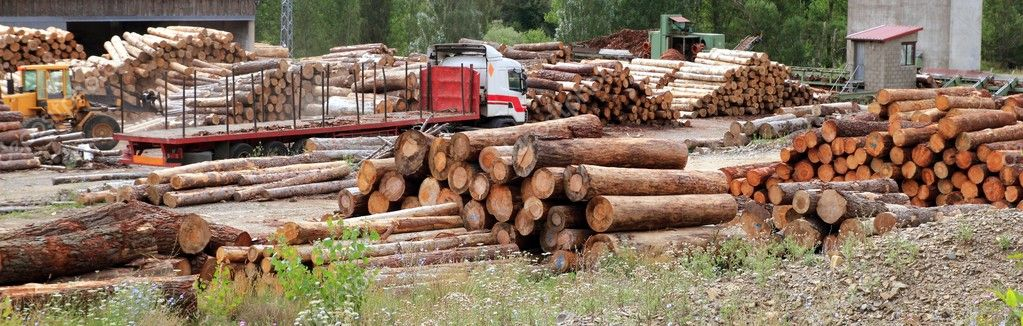 Log timber trunks wooden industry stock outdoor sawmill — Stock Photo #5511093