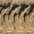Tractor tires pneus footprint printed on beach sand - Stock Photo