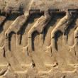 Tractor tires pneus footprint printed on beach sand — Stock Photo