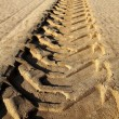 Tractor tires pneus footprint printed on beach sand — ストック写真