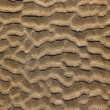 Beach sand waves pattern texture brown wet — Stock Photo
