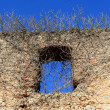 Ancient castle wall window invaded by climbing plants - Stock Photo
