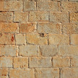 Castle masonry wall carved stone rows pattern texture — Stock Photo