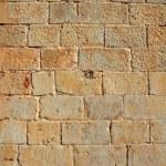 parede de alvenaria de castelo esculpido pedras linhas textura padrão — Fotografia Stock  #5560161