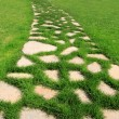 Stone path in green grass garden texture — Stock Photo