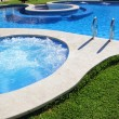 Stock Photo: Blue jet spa pool in green grass garden