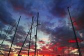 Dramatic marina sailboat mast sunset sky backlight — Stock Photo