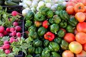 Greengrocers radish tomatoes green red peppers — Stock Photo