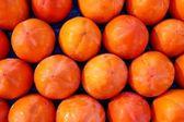 Persimon fruits pattern in rows arrangement fruit — Stock Photo