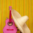Charro mexican hat pink guitar — Stock Photo #5600121