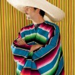 Постер, плакат: Mexican profile man typical poncho sombrero serape