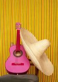 Charro mexican hat pink guitar — Stock Photo