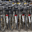 Stock Photo: Bicycles renting shop pattern rows parking