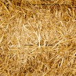 Bale golden straw texture ruminants animal food — 图库照片