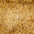 Bale golden straw texture ruminants animal food — Stockfoto