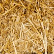 Bale golden straw texture ruminants animal food - Stock Photo