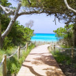 Stock Photo: Beach way to Illetas paradise beach Formentera