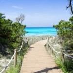 Beach way to Illetas paradise beach Formentera — Stock Photo